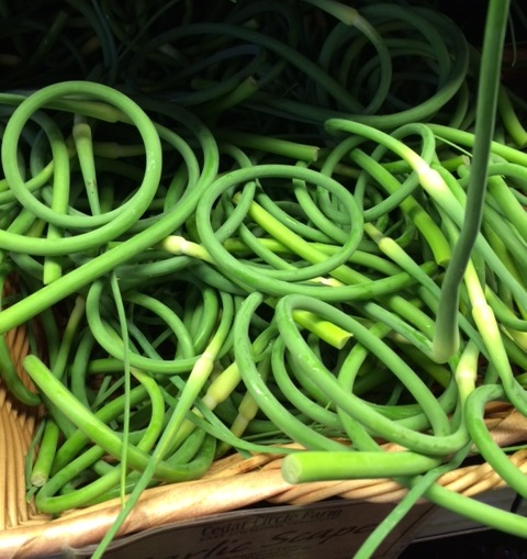 scapes in a basket at cedar circle farm in the Upper Valley
